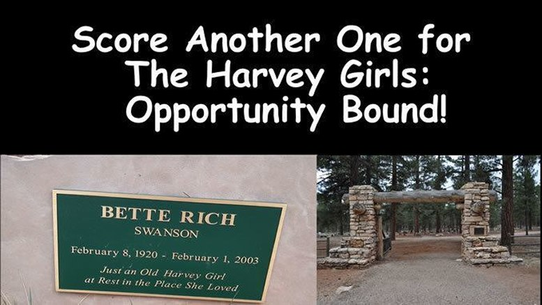 More Kudos for Harvey Girls: Opportunity Bound [video]
