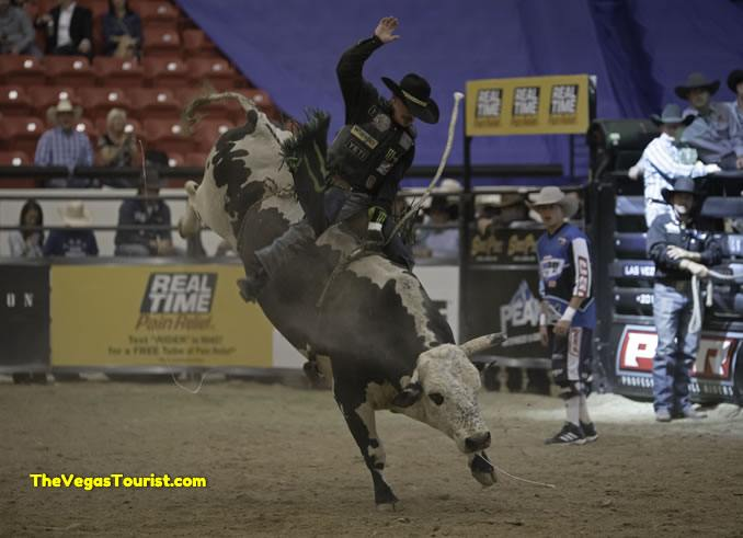 Chase Outlaw PBR BlueDef Champ