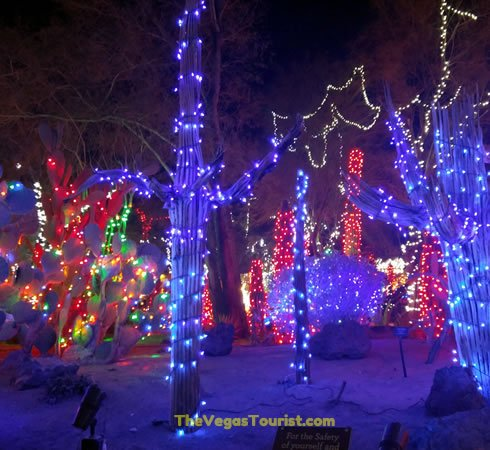 Cactus Garden Holiday Lights