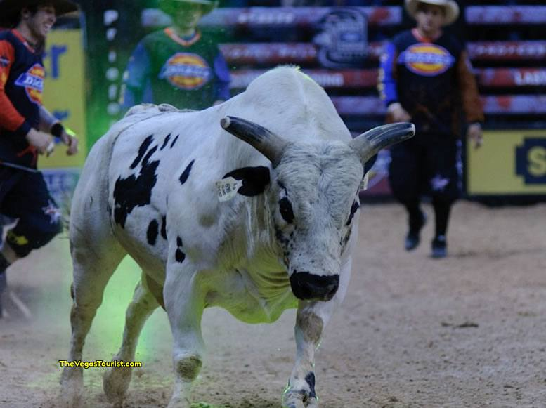 2017 PBR World Finals coming to Las Vegas