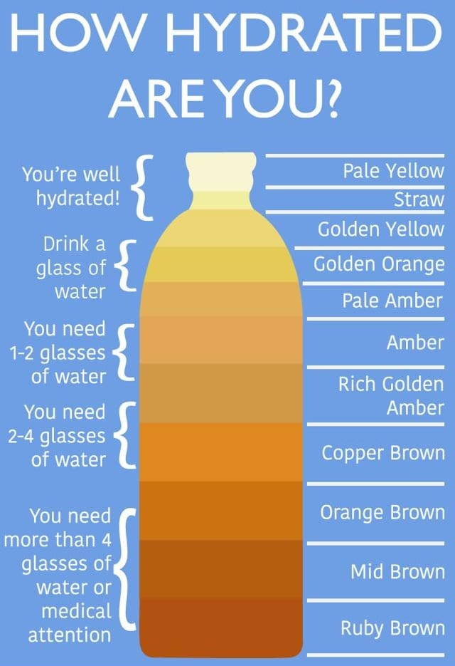 How Hydrated Are You?